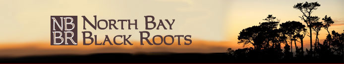 North Bay Black Roots